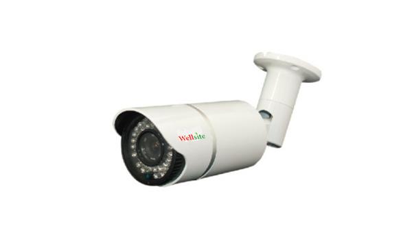 IP Camera WTX-3013TE/WTX-3020TE (P)