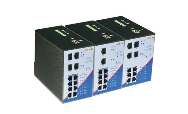 Industrial Gigabit PoE Switch WTRS-408G