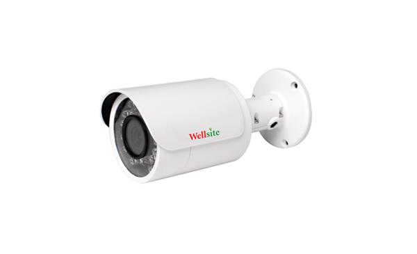 IP Camera WAL-1325H (P)/ WAL-2425H (P)