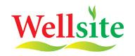 Wellsite